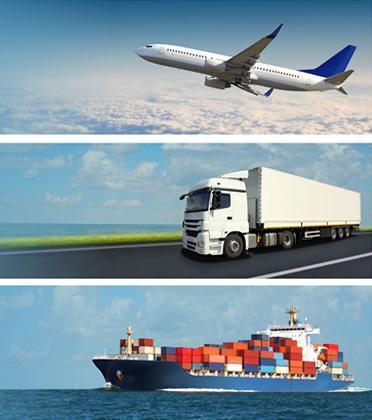 Cargo Services | Sea | Road | Air Cargo Service Company in
